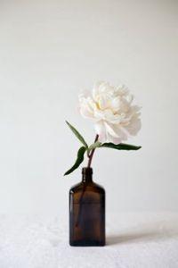 bloem in apothekersflesje
